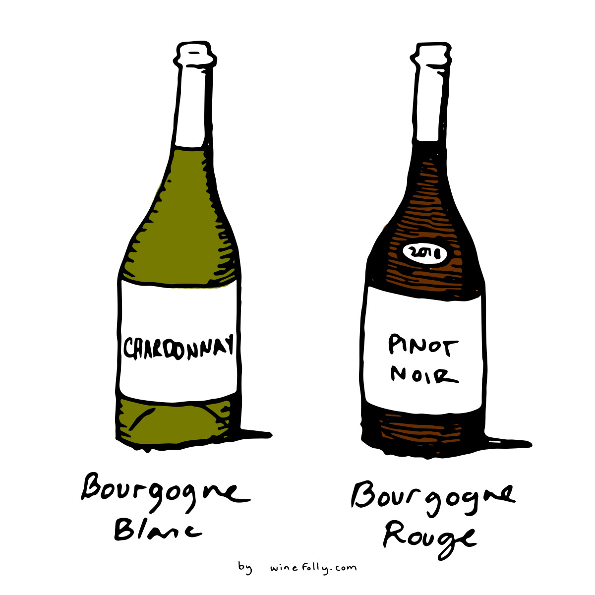 Chardonnay and Pinot Noir are the two primary grapes of Bourgogne (Burgundy) Blanc and Rouge wines - illustration by Wine Folly