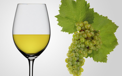 Chardonnay wine in a Glass and a bunch of Chardonnay grapes