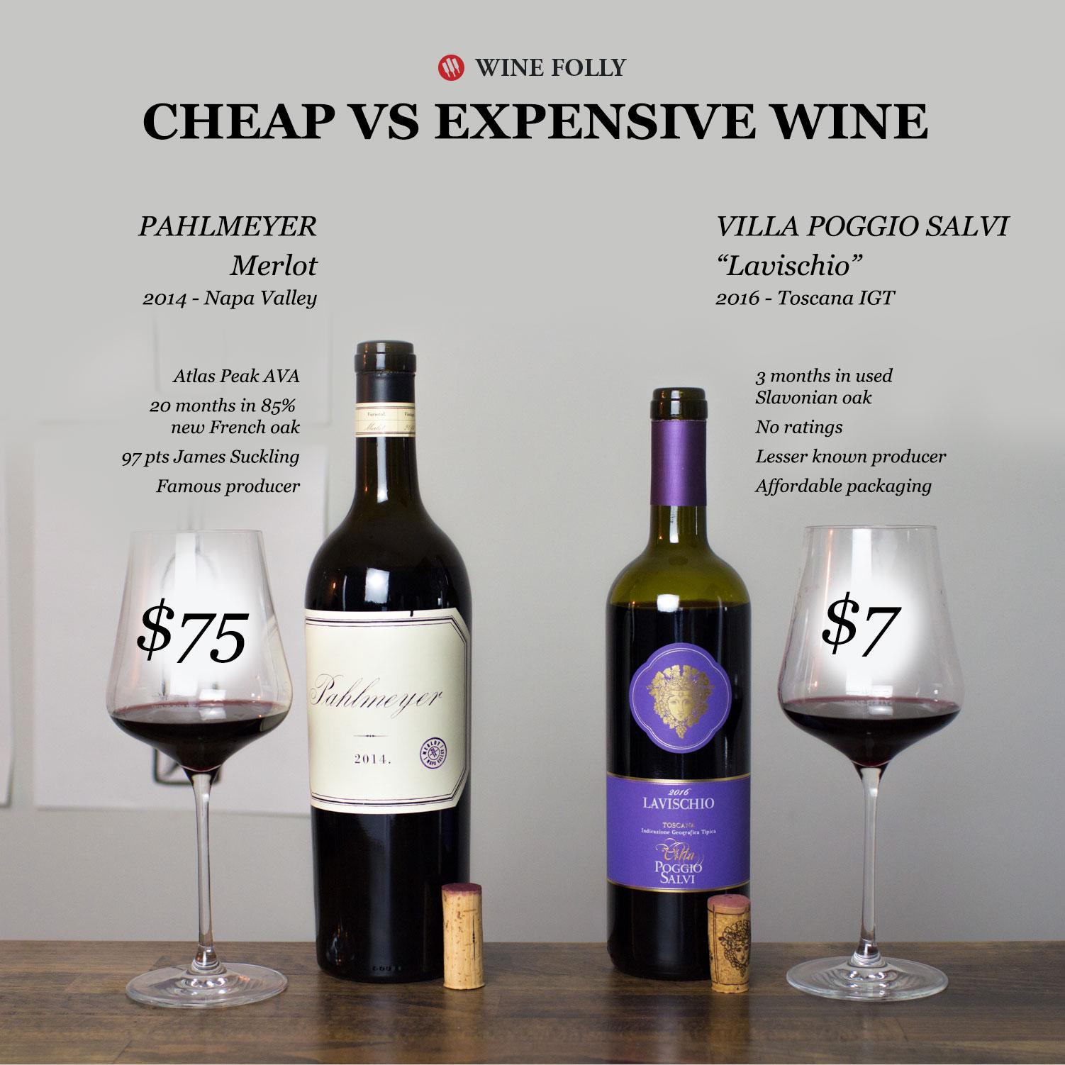 Cheap vs Expensive Wine Taste Test - Wine Folly - Merlot 2019