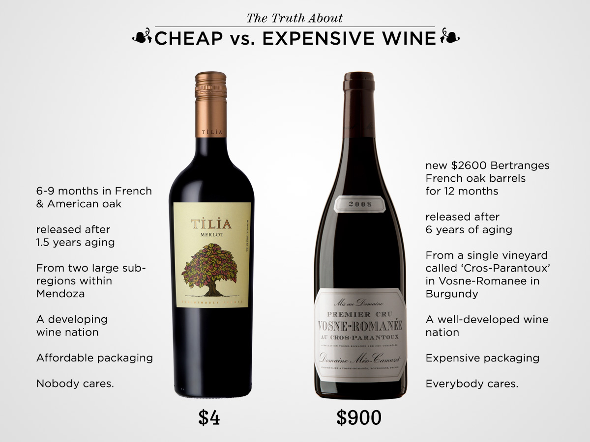 cheap-vs-expensive-wine