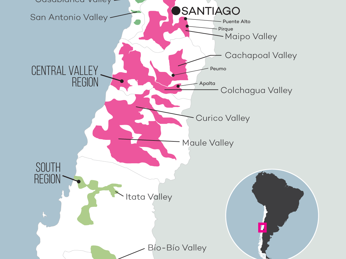 Chile wine map close up by Wine Folly