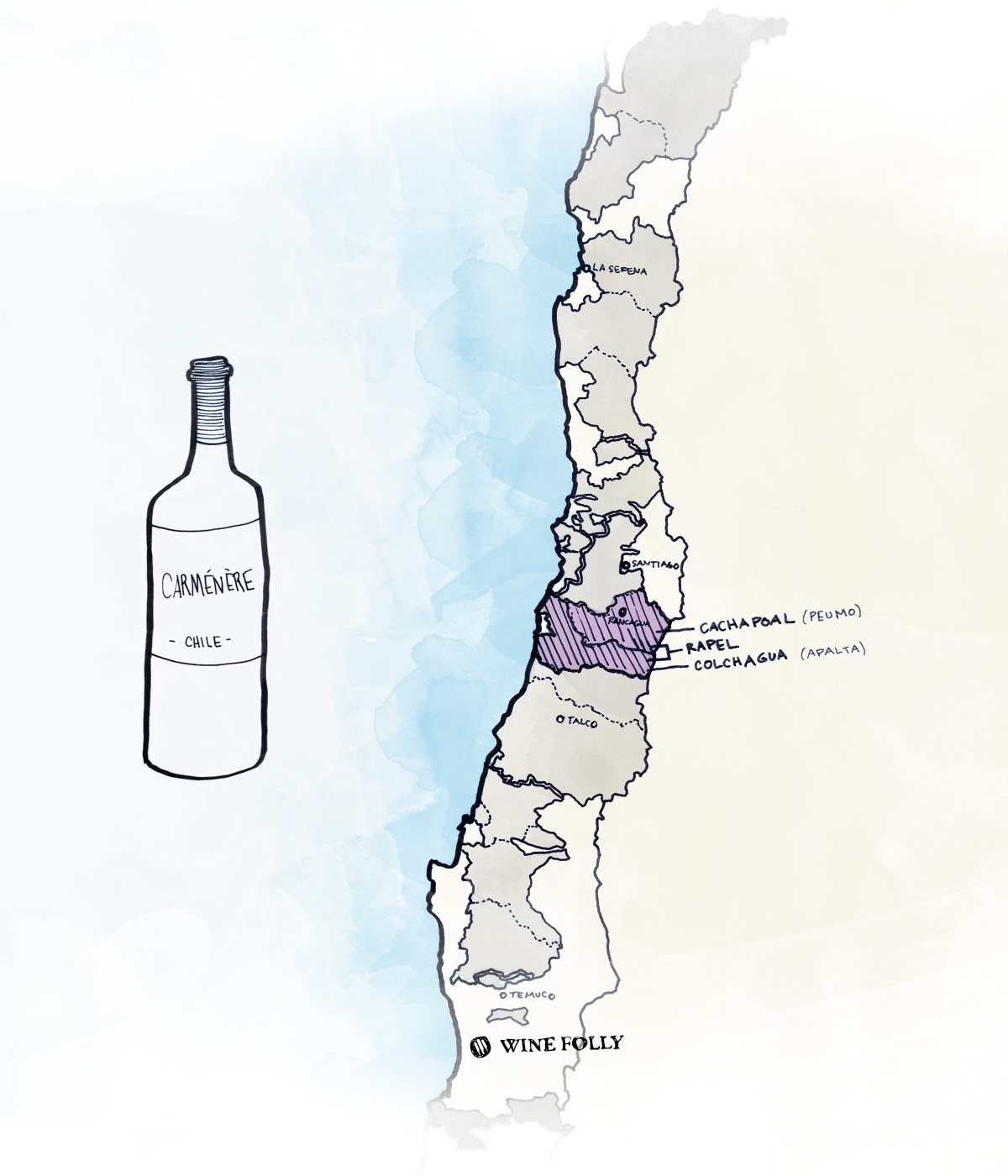 Best wine regions in Chile for Carmenere red wine