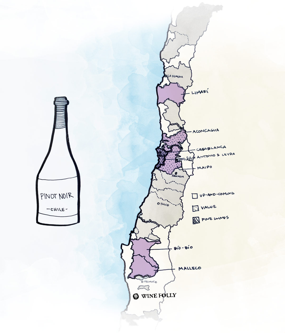 Best wine regions in Chile to look for Pinot Noir