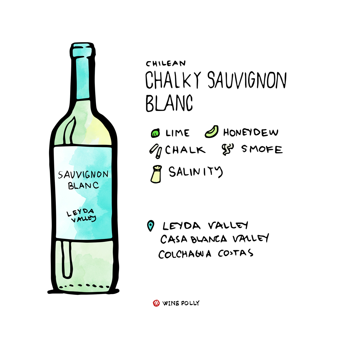chilean-sauvignon-blanc-bottle-winefolly