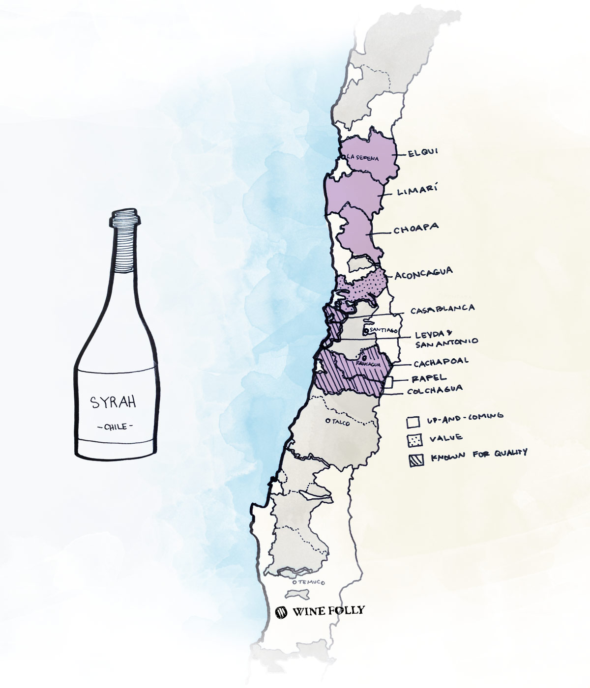 Best wine regions in Chile for Syrah wine