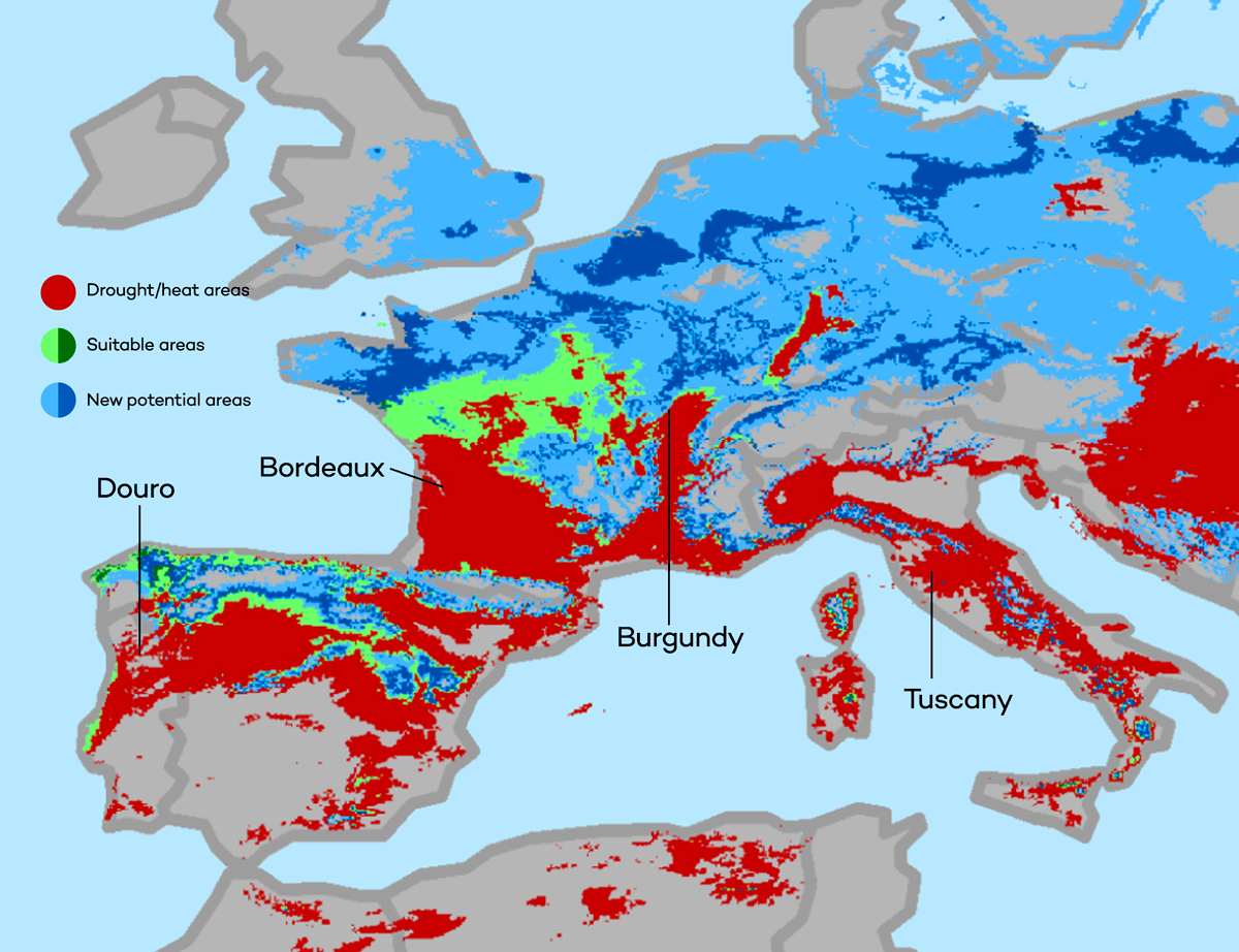 Climate Change, Global Warming and Wine Vineyards in Western Europe by conservation.org
