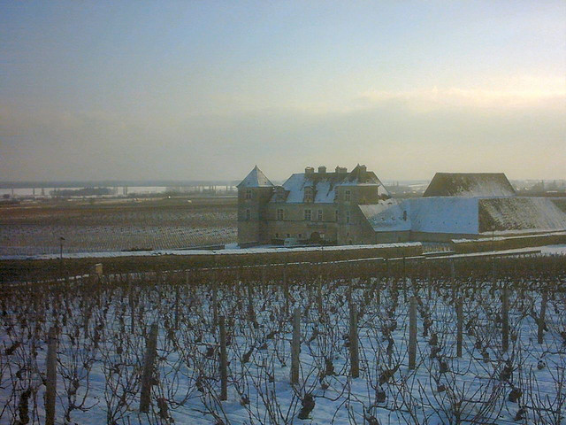 A view of Clos Vougeot built in the 1300s surrounded by pinot noir vineyards
