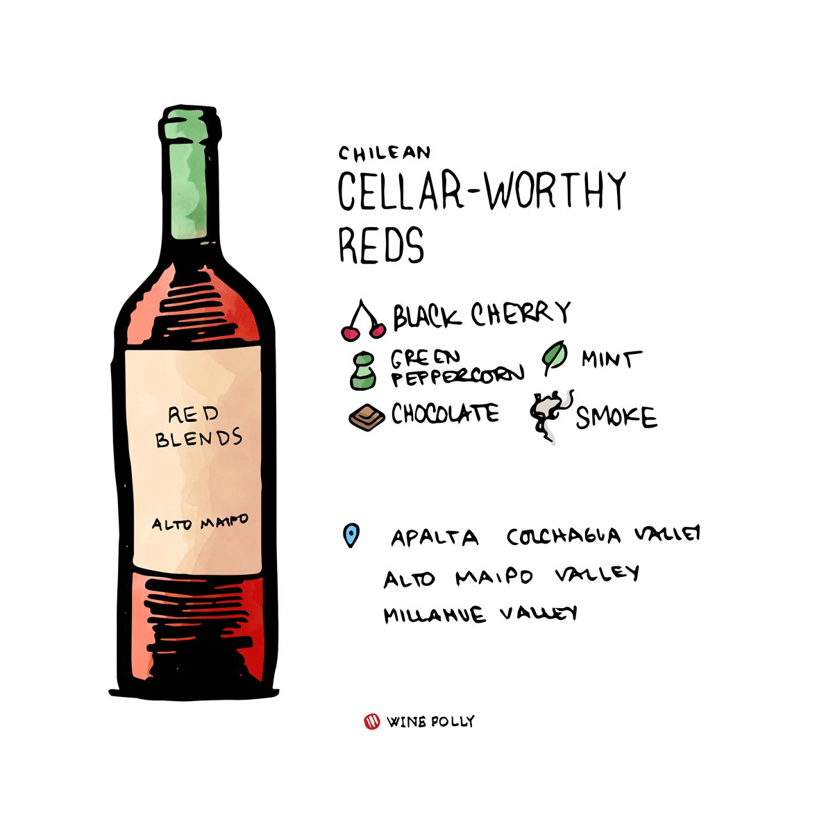 Collectible Chilean red wines that will age well - illustration by Wine Folly