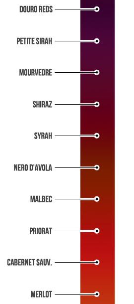 color-meter-full-bodied-red-wine