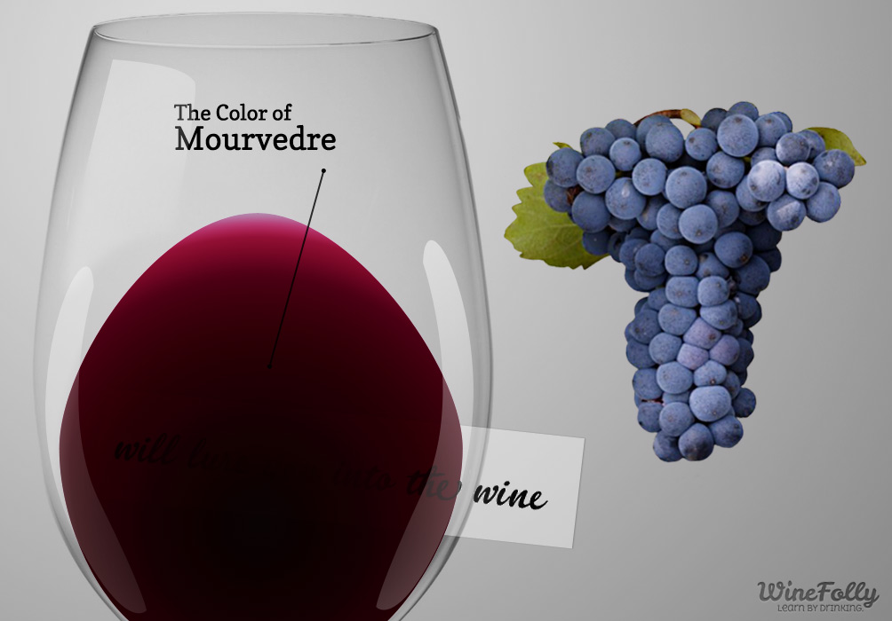 Color of Mourvedre wine in a glass wine grapes
