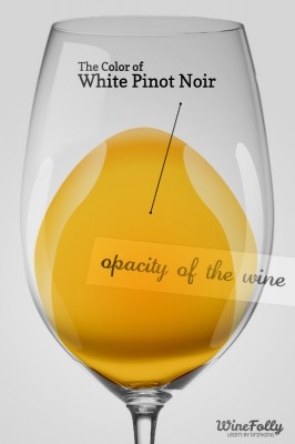 Color of white pinot noir in a glass also known as vin gris or blanc de noir