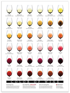 color of wine (small) Wine Folly