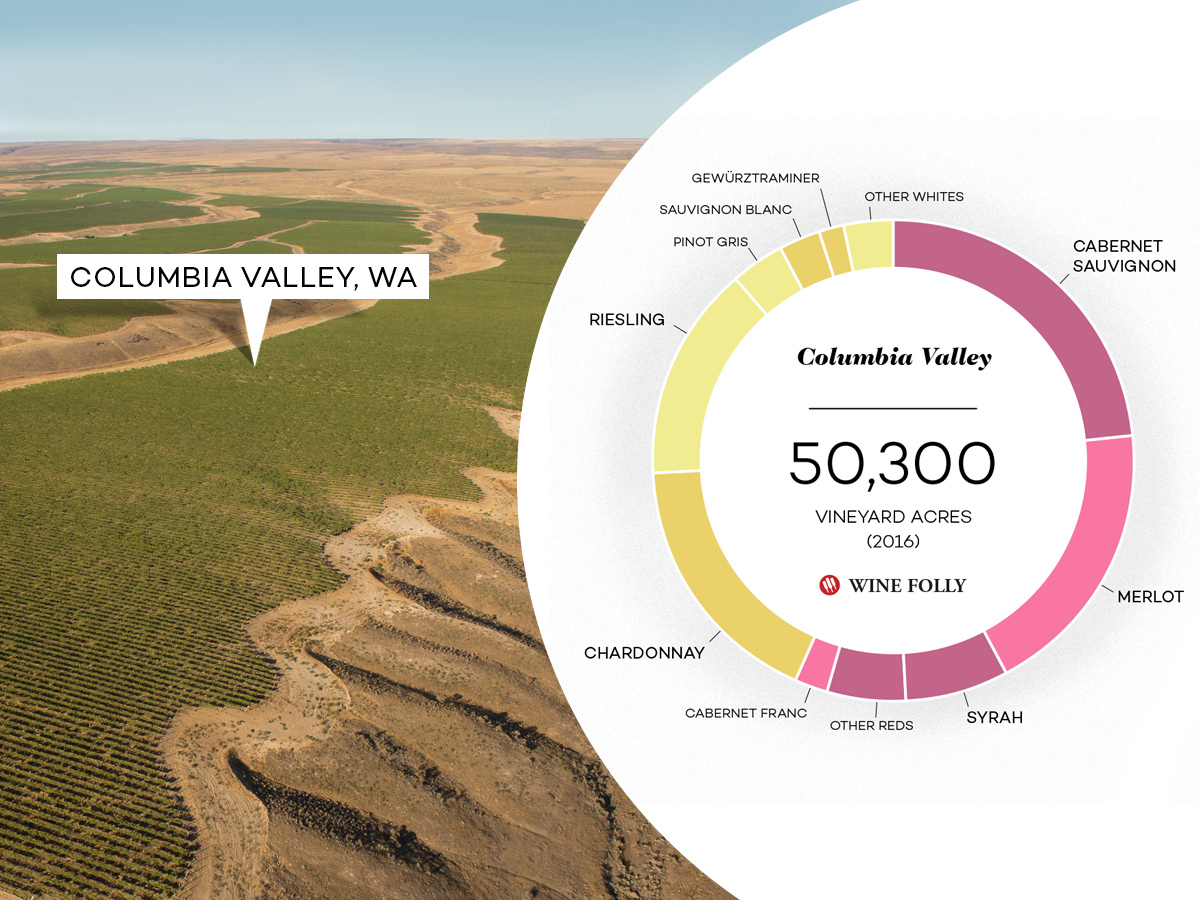 Columbia Valley: Washington's Biggest Wine Region | Wine Folly