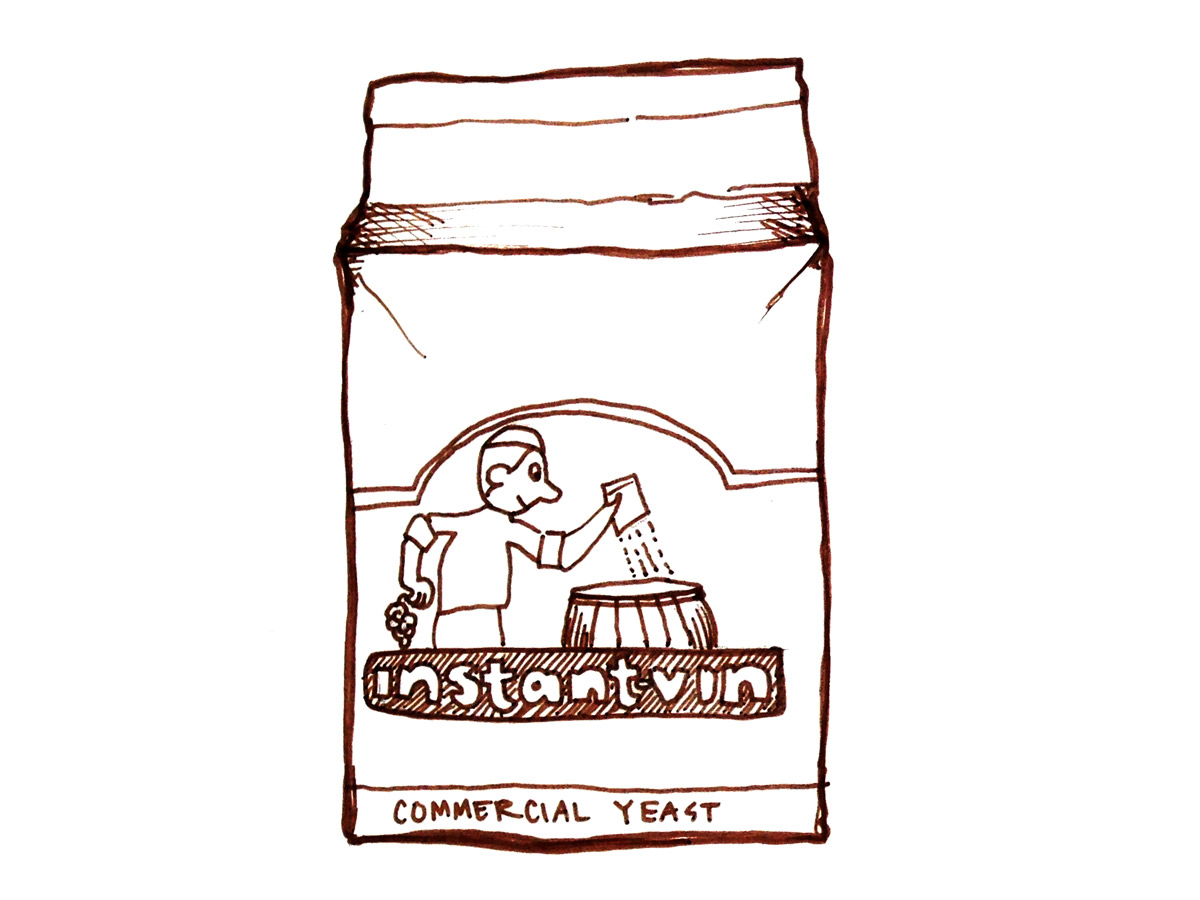 commercial wine yeast