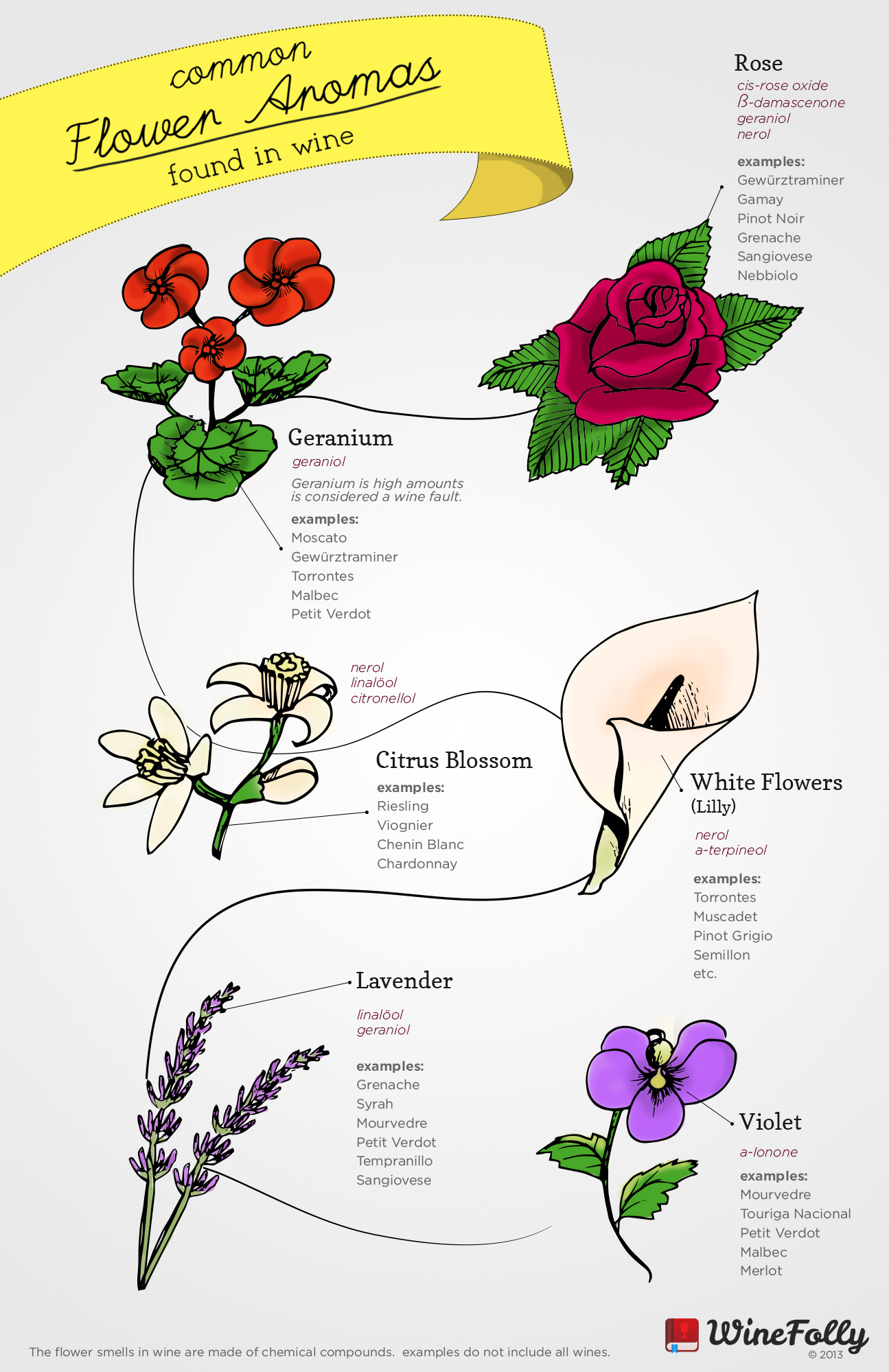 Common flower aromas in wine