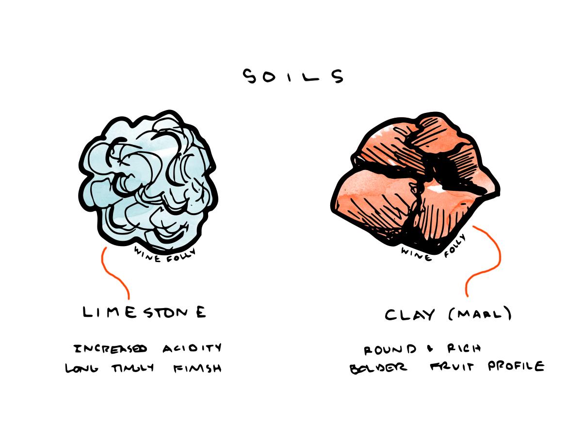 Cote des Bar Champagne soils