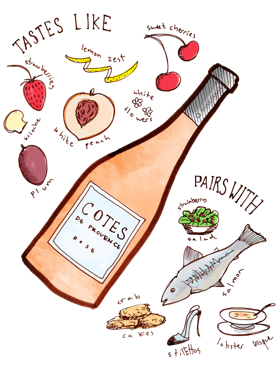 Cotes de Provence rose wines to taste illustration by Wine Folly