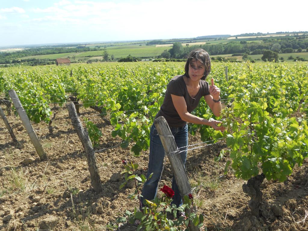 cute-woman-winemaker-jean-tellier-loire-sauvignon-blanc-jameson-fink