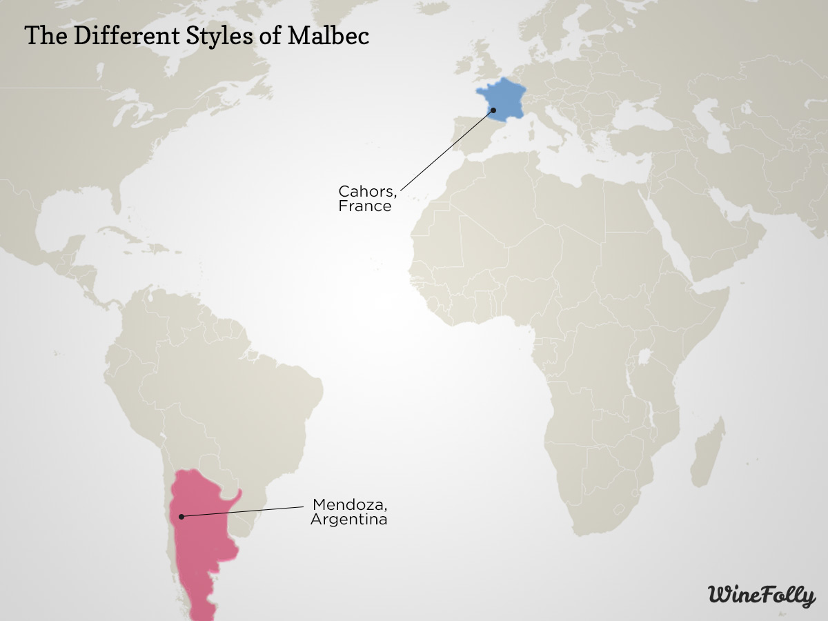 Learn the Difference: Argentinian Malbec vs. French Malbec ...