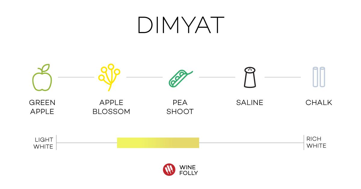 dimyat-tasting-notes-wine-folly