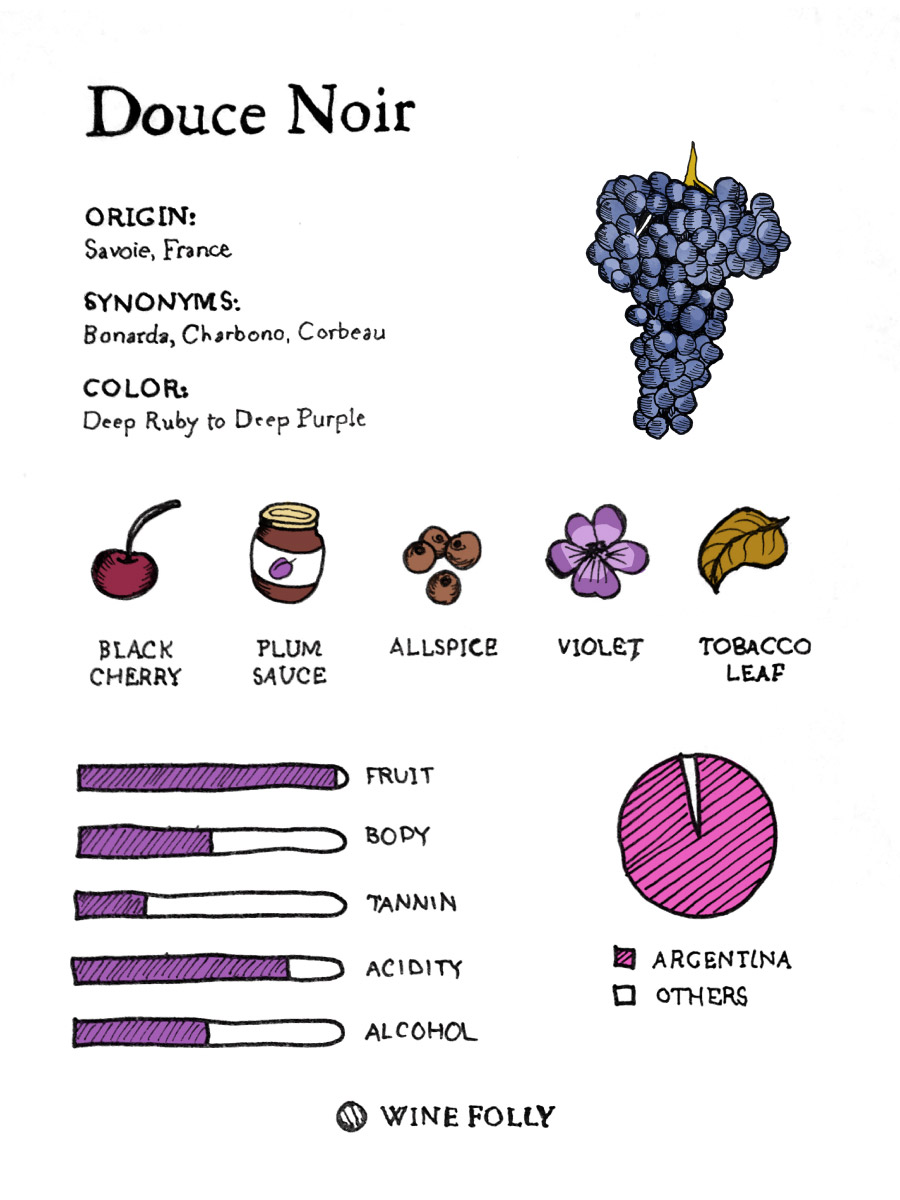 Douce Noir Wine Taste and Grape Profile by Wine Folly