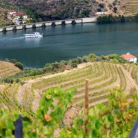 douro-river-valley-portugal-port-wine-country