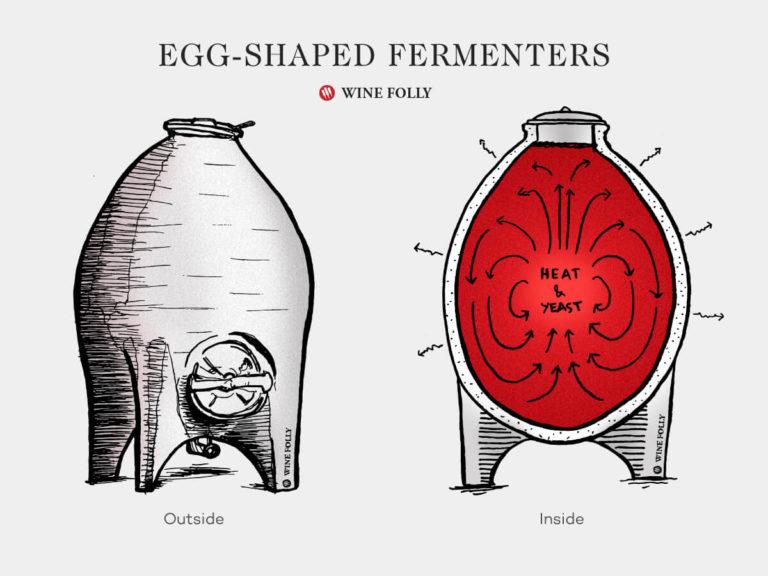 egg-shaped-fermenters-tanks-illustration-winefolly1200x900