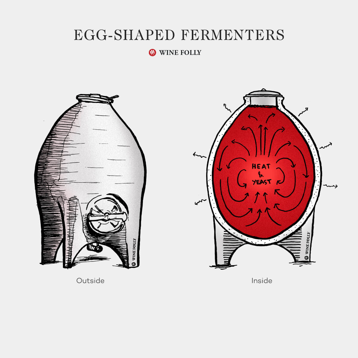 egg-shaped-fermenters-tanks-winefolly-illustration1200x1200