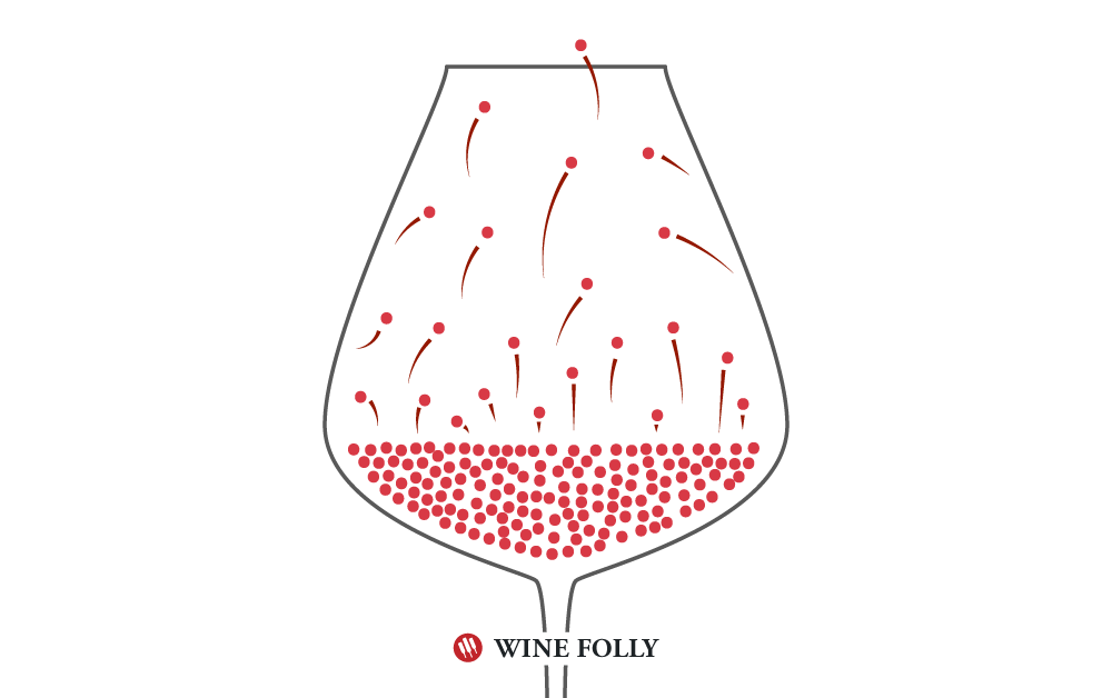 Alcohol Evaporation Diagram by Wine Folly