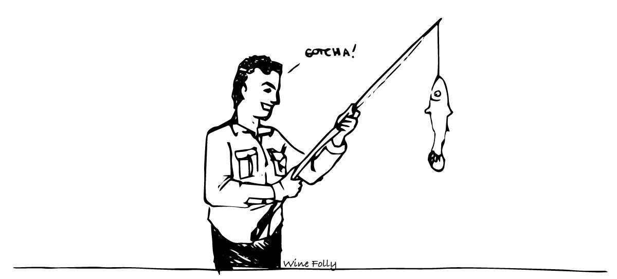 fishing-comic-by-winefolly