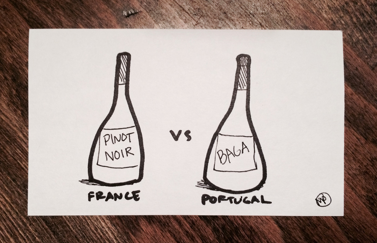 france-wine-vs-portugal-wine