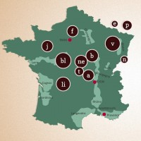 French oak barrels for wine forest map and names
