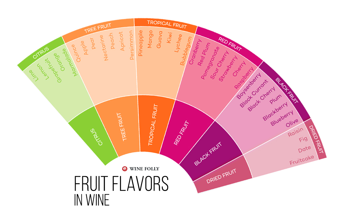 Fruit Flavors in Wine Infographic by Wine Folly.