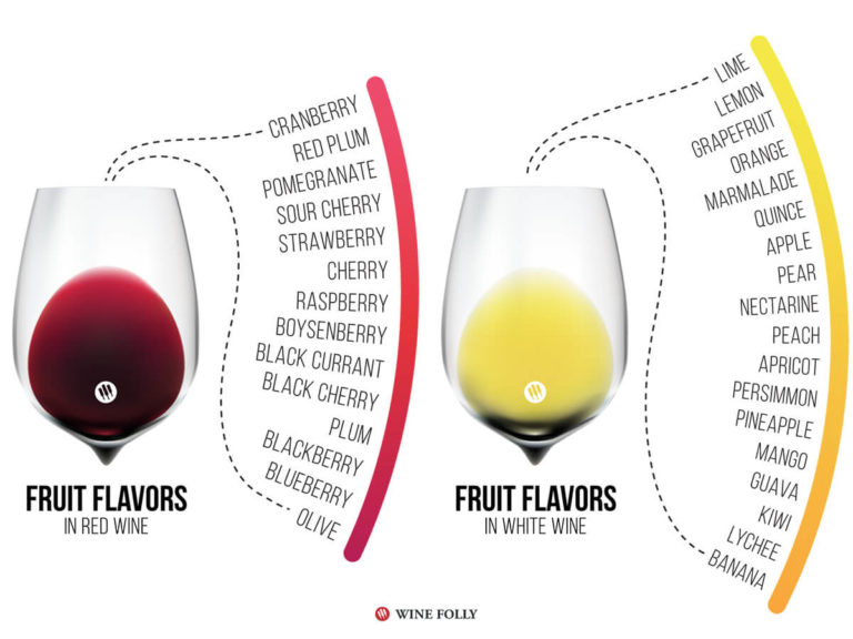 fruit-flavors-red-white-wine-folly-infographic