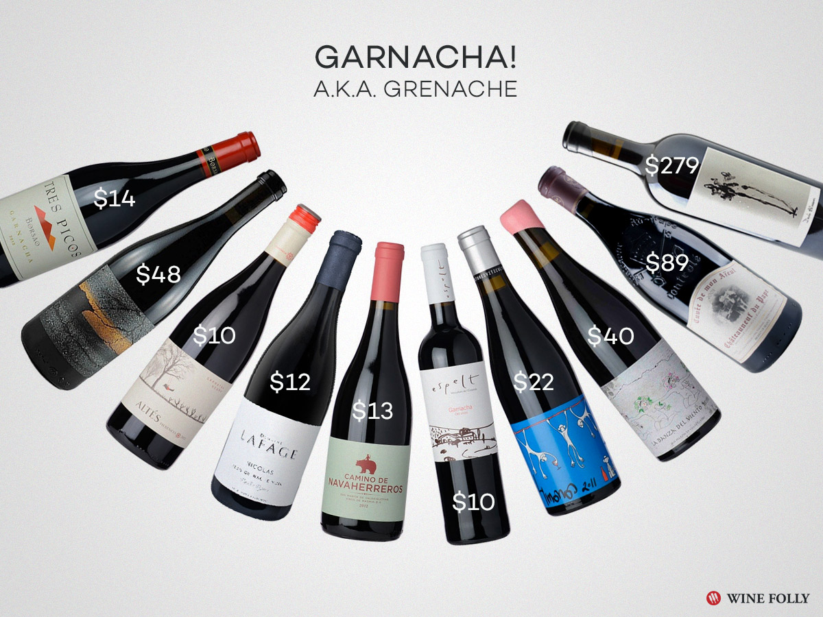 best garnacha wines for the fall mood with tasting notes