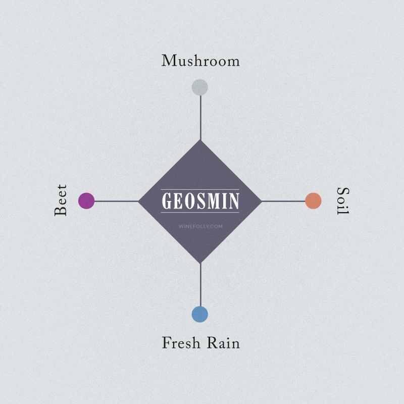geosmin-wine-flavors