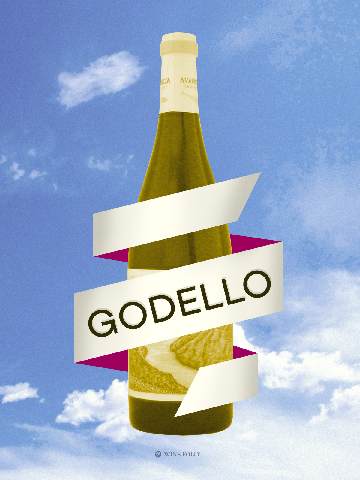 Godello Illustration by Wine Folly
