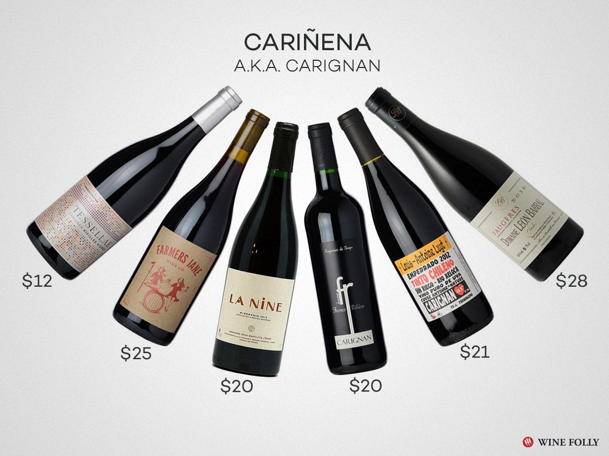 Great Carignan Wines Cariñena