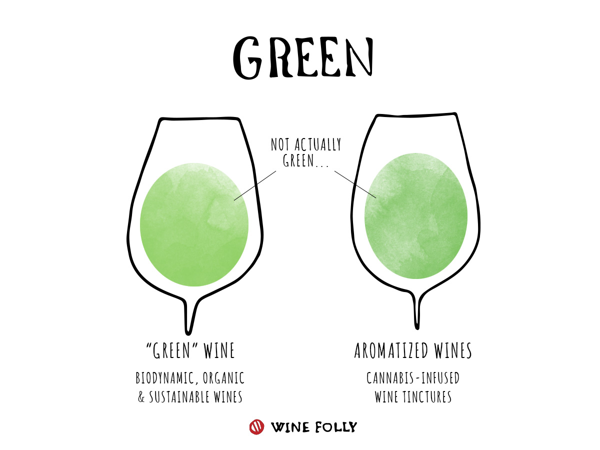 Green Wine Color information wine in glasses illustration by Wine Folly