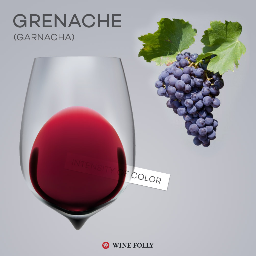Grenache Wine Glass and Grapes - Garnacha Wine Folly