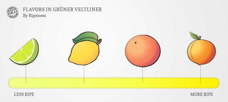 Gruner Veltliner Wine Taste