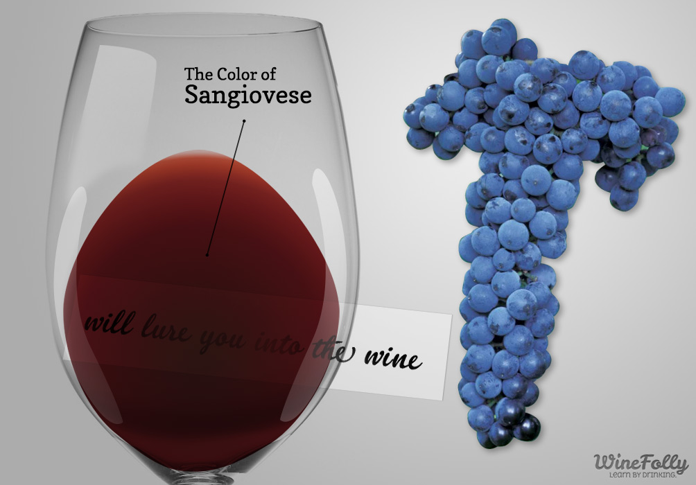 guide-to-sangiovese-wine