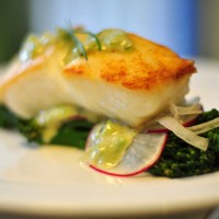 halibut with broccoli radish lricharz