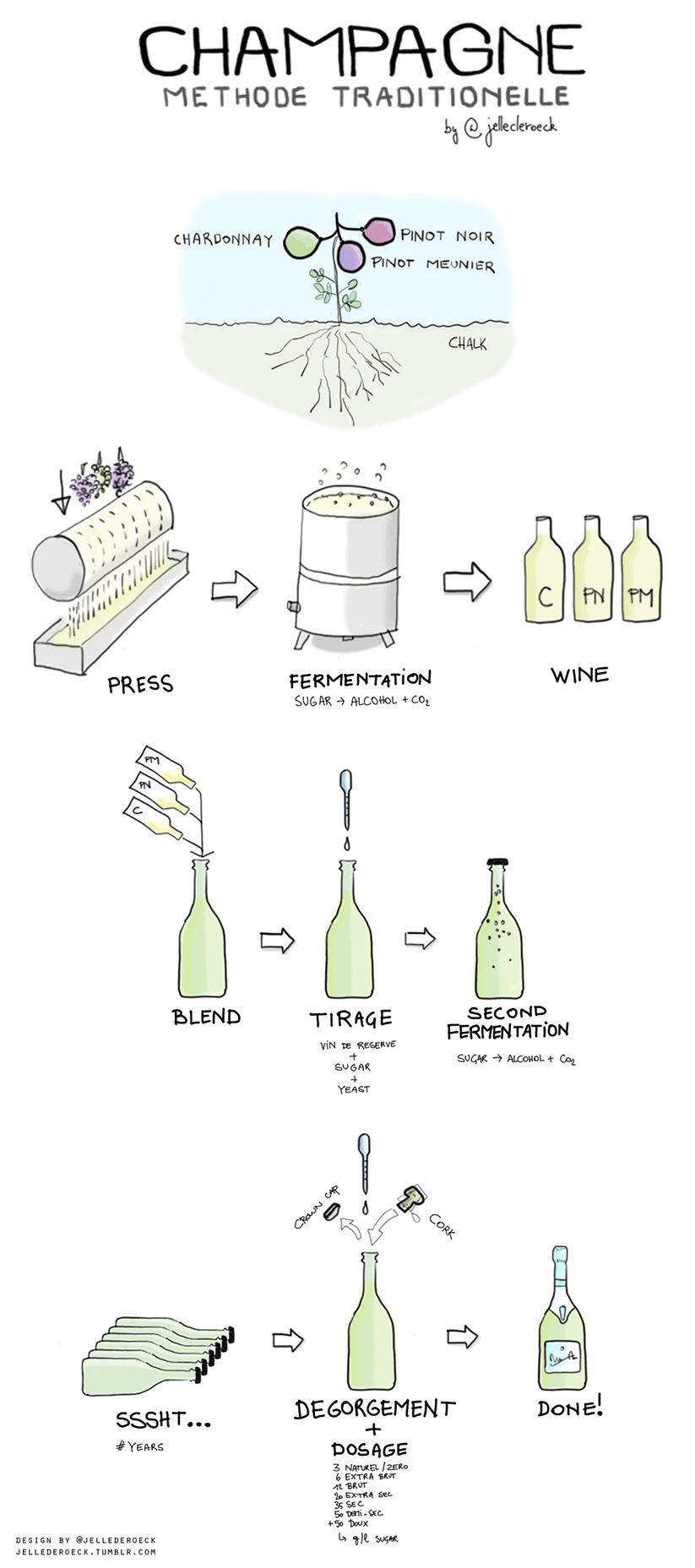 how-champagne-is-made-infographic