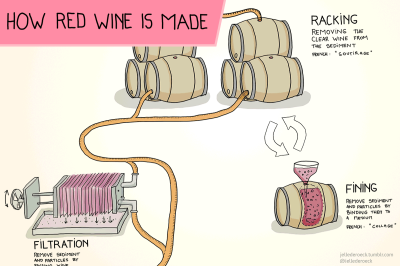 how-is-red-wine-made-xcerpt