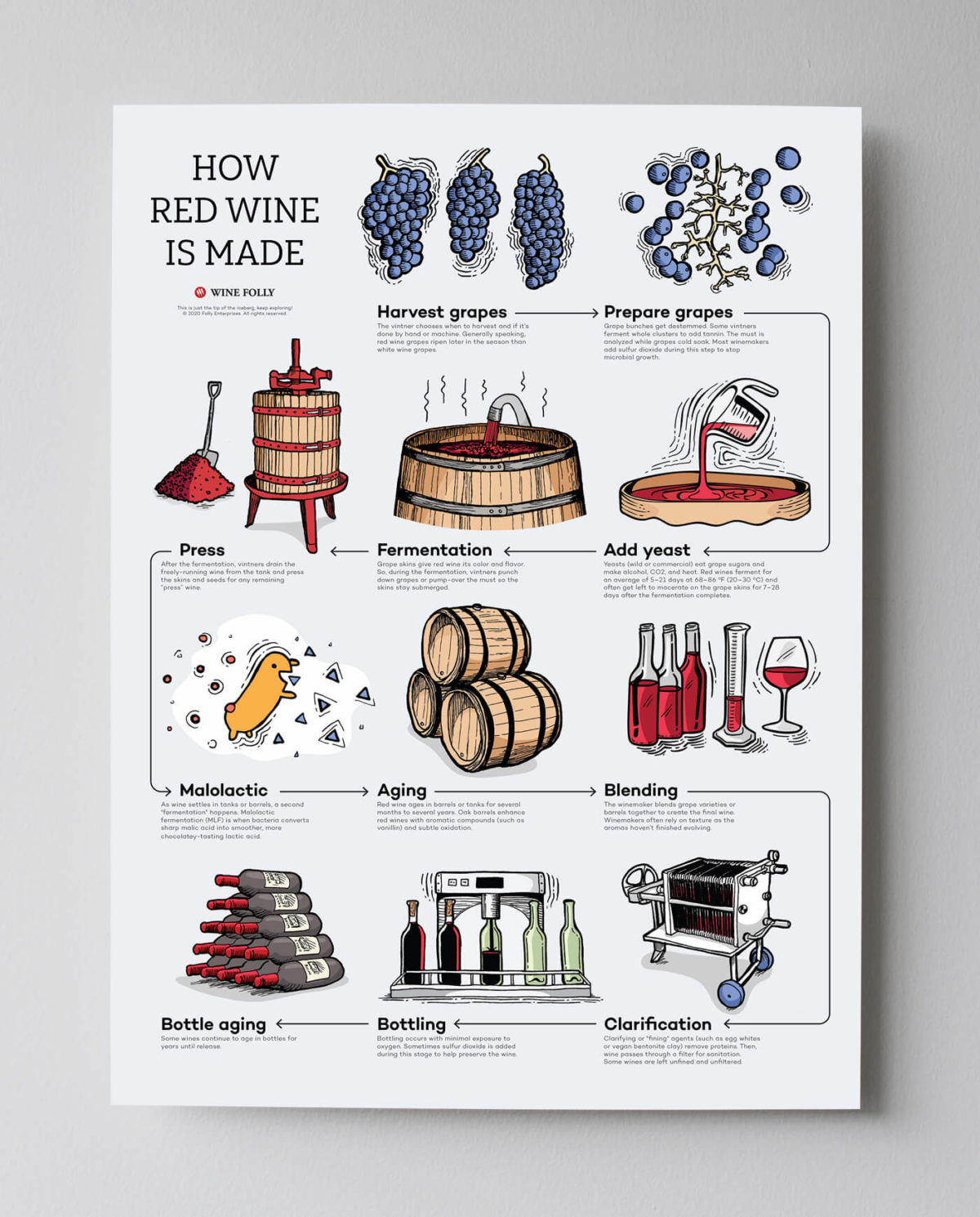 how-red-wine-is-made-poster-gray-bg