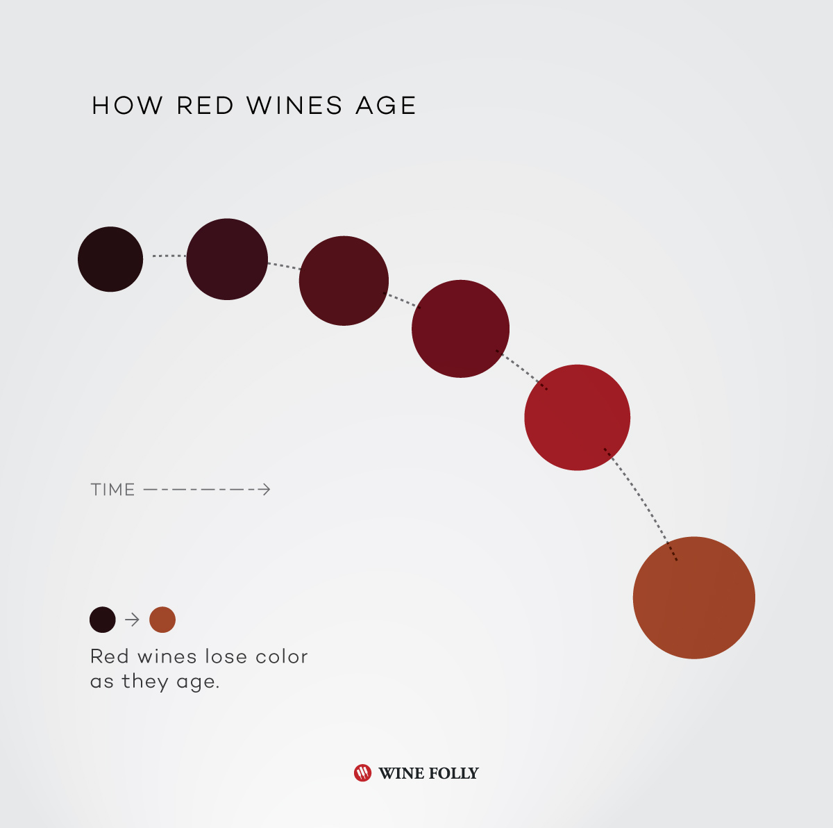 How red wines age infographic by Wine Folly