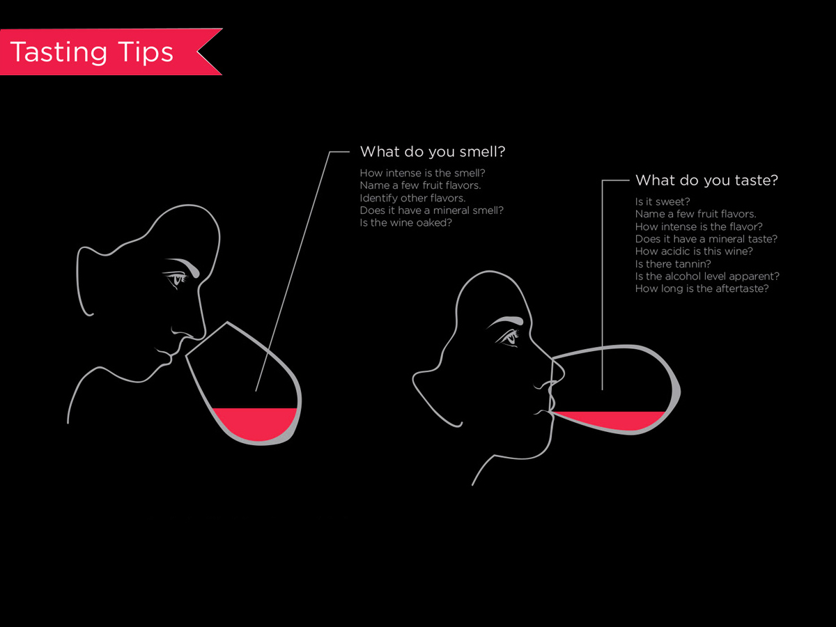 Geek Techinique on How to Taste Red Wine | Wine Folly