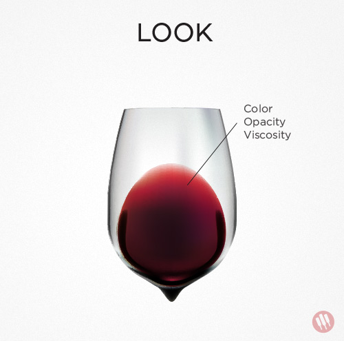 how to taste wine step 1 look red wine in a glass