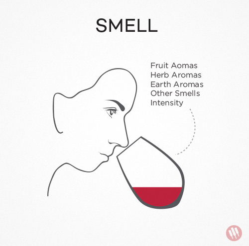 how to taste wine step 2 illustration of woman smelling a glass of wine